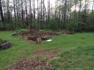 051314 Brush piles.jpeg