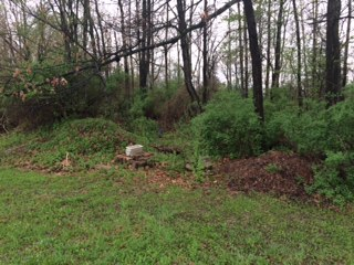 051314 SW corner compost area.jpeg