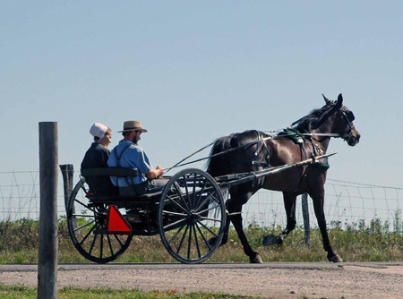 Click image for larger version.  Name:Amish horse & buggy.jpg Views:232 Size:59.2 KB ID:37139