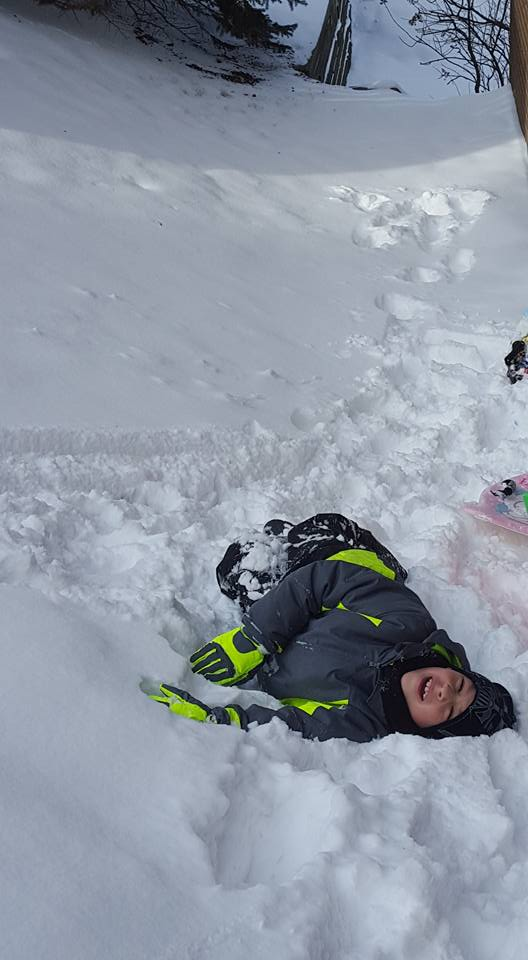 Click image for larger version.  Name:Carter in Snow.jpg Views:28 Size:51.3 KB ID:130905