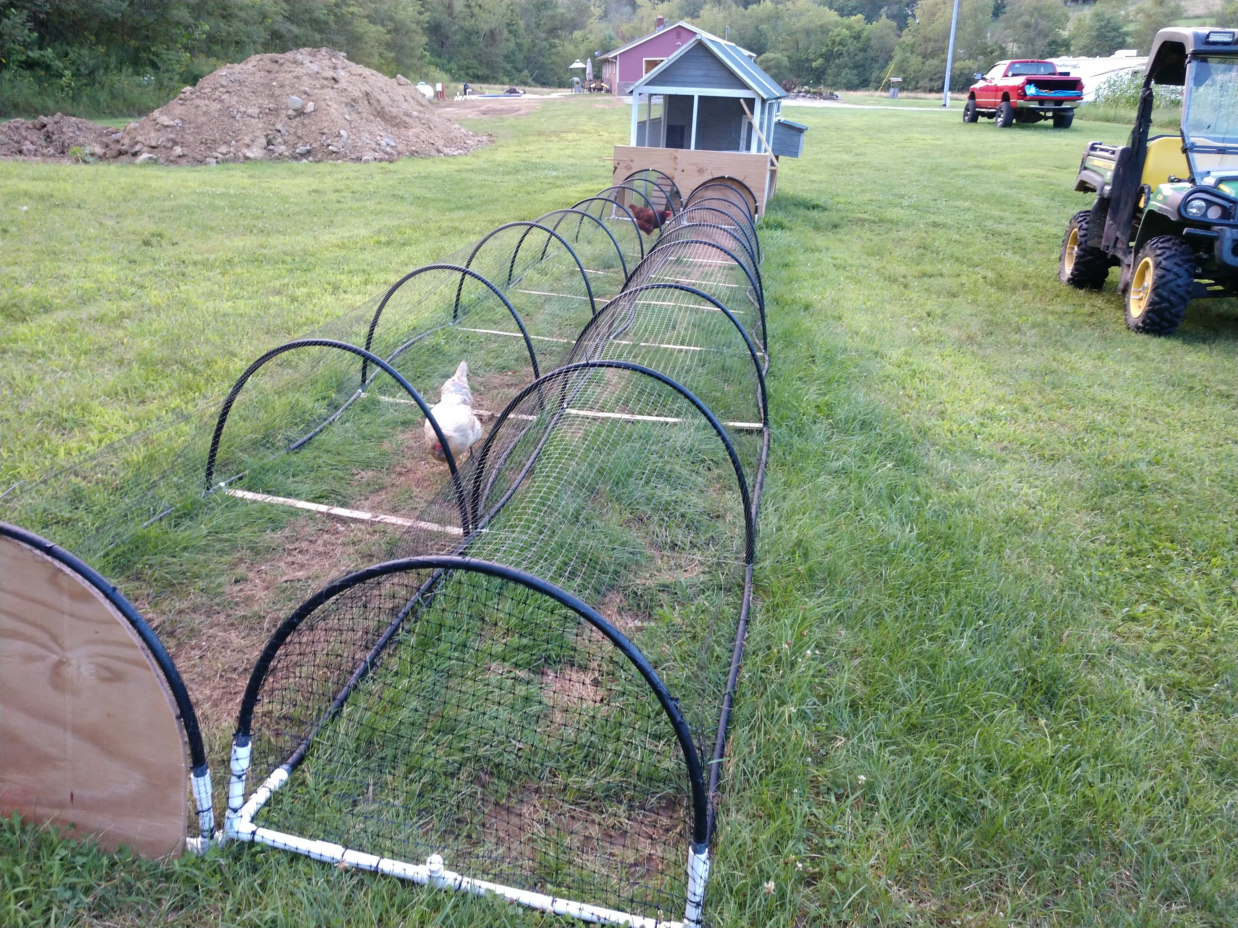 Click image for larger version.  Name:Chicken Run.jpg Views:9 Size:2.99 MB ID:700760