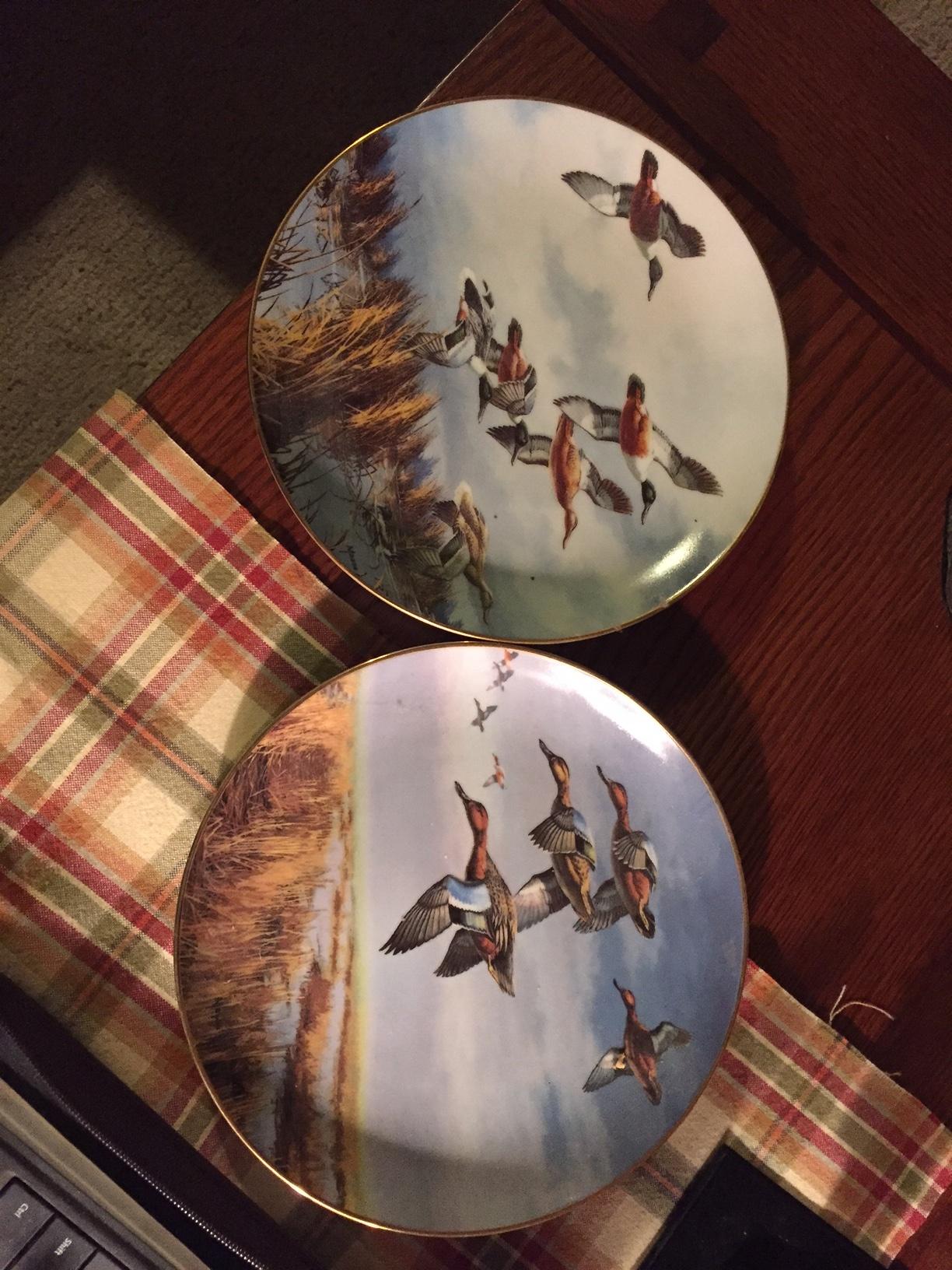 Duck Plates.jpg