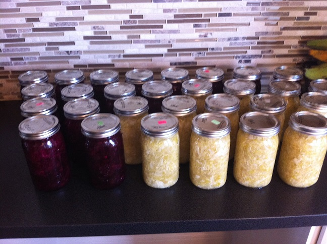 Click image for larger version.  Name:ferment_jars.JPG Views:47 Size:129.1 KB ID:28007
