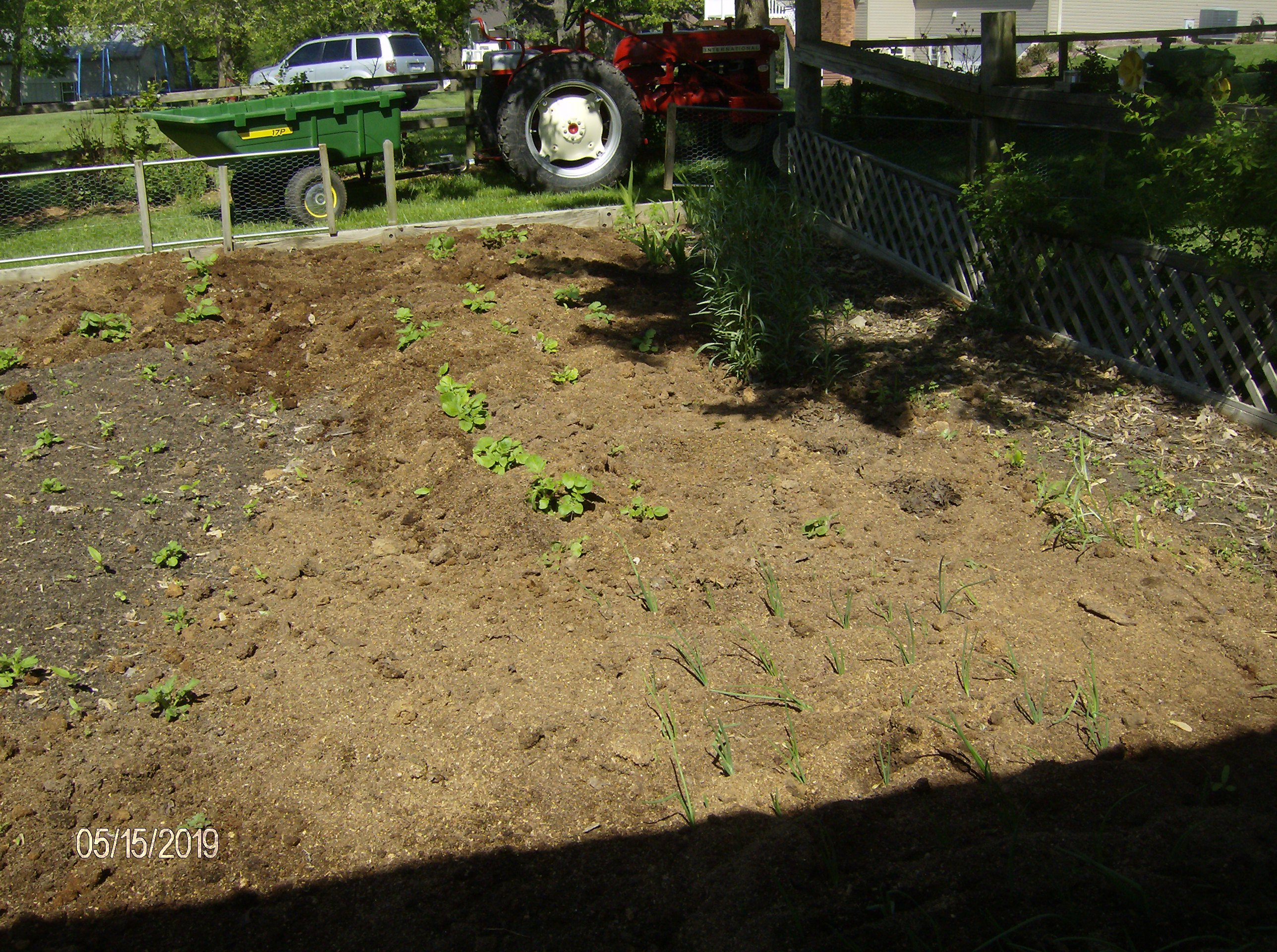 Click image for larger version.  Name:Gardens 2019 008.JPG Views:12 Size:1.40 MB ID:686202
