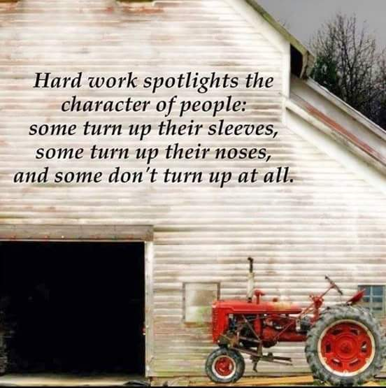 Click image for larger version.  Name:Hard work.jpg Views:43 Size:40.9 KB ID:164417