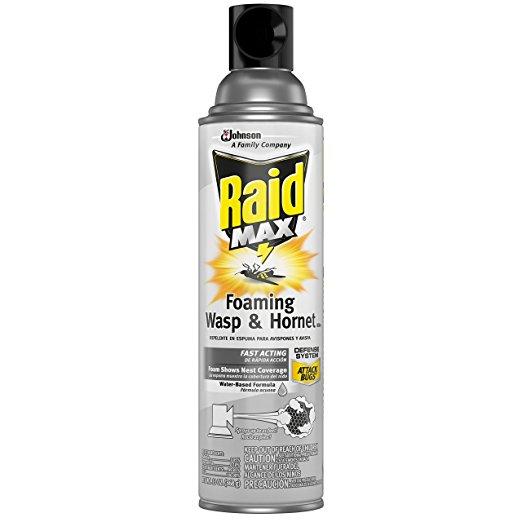 Click image for larger version.  Name:raid.jpg Views:182 Size:26.6 KB ID:644756