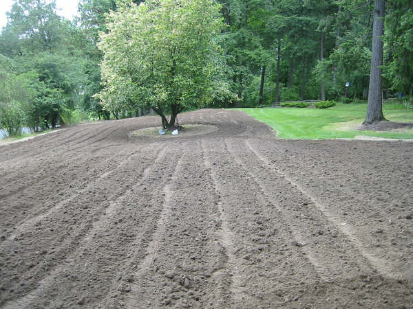 Click image for larger version.  Name:rough tilling of front orchard.jpg Views:254 Size:64.2 KB ID:657490