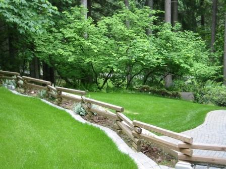 Click image for larger version.  Name:side yard.jpg Views:42 Size:47.2 KB ID:29634