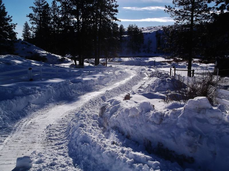 Click image for larger version.  Name:Snow.jpg Views:16 Size:97.3 KB ID:612954