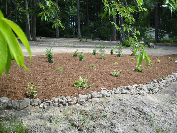 Click image for larger version.  Name:stone border at edge of front ditch.jpg Views:255 Size:211.5 KB ID:657492