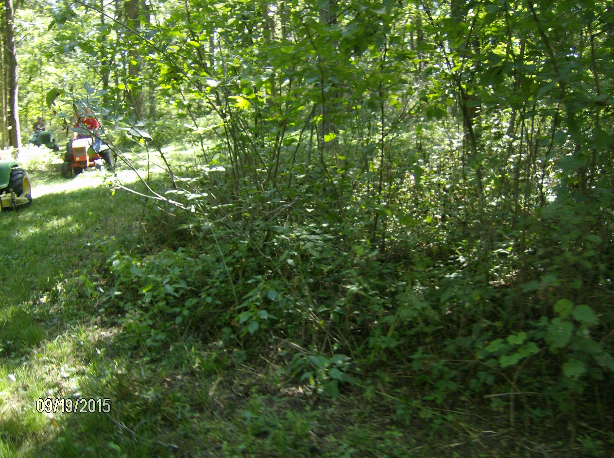 Click image for larger version.  Name:Tractor Shows 2015 037.JPG Views:29 Size:377.3 KB ID:58153