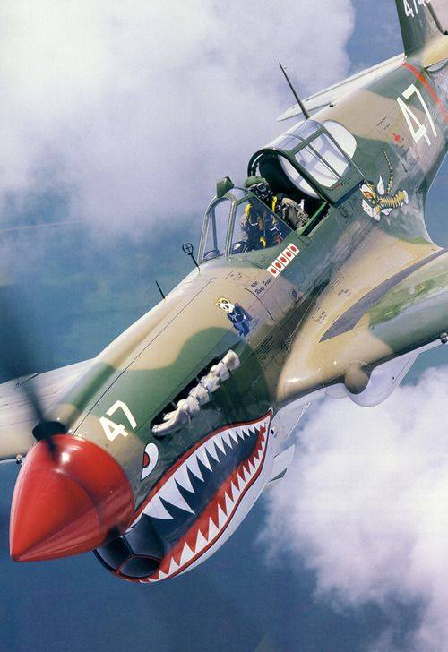 Click image for larger version.  Name:Warbird P40.jpg Views:12 Size:47.7 KB ID:40916