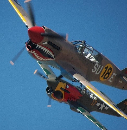 Click image for larger version.  Name:Warbird P40's.jpg Views:12 Size:57.1 KB ID:40908