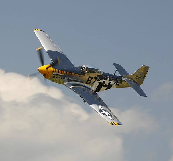 Click image for larger version.  Name:Warbird P51 Mustang.png Views:13 Size:273.2 KB ID:40905