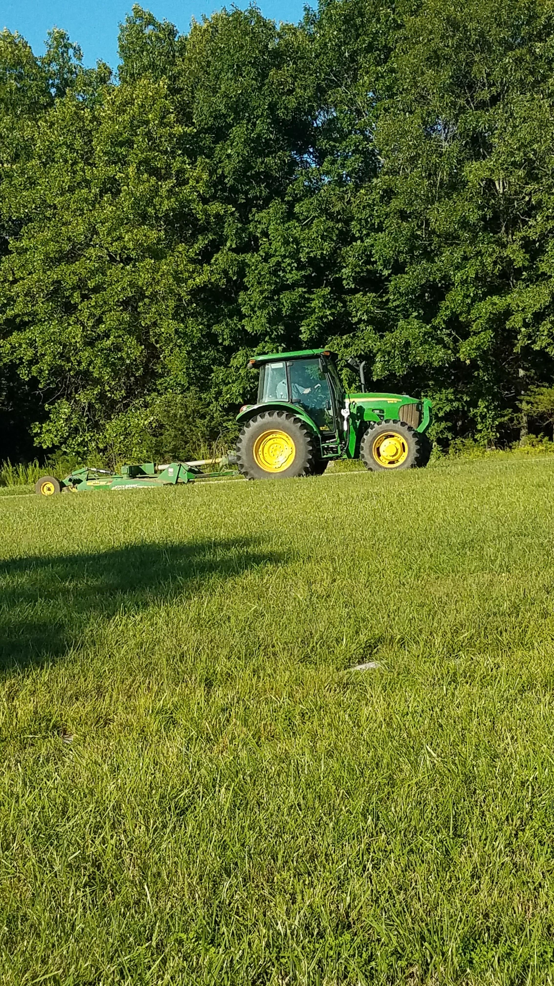 yard mowing.jpg