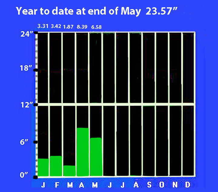 Year to date at end of May.jpg