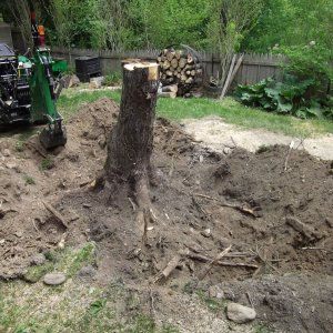 1025r stump removal.
